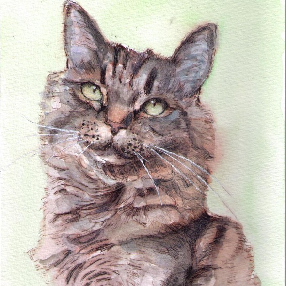 Portrait painting of a cat in watercolor and pen