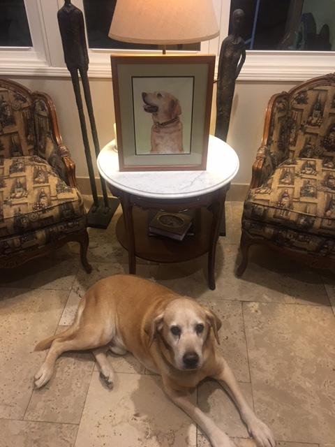liberty-dog-framed-portrait-commission-livingroom