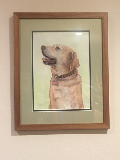 liberty-dog-framed-portrait-commission