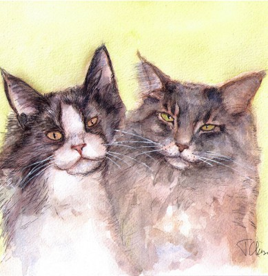 Commissioned cat portrait drawing in watercolor and pen