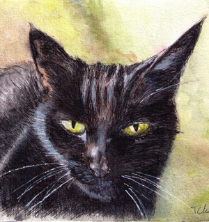 Commissioned cat portrait painting in watercolor and pen