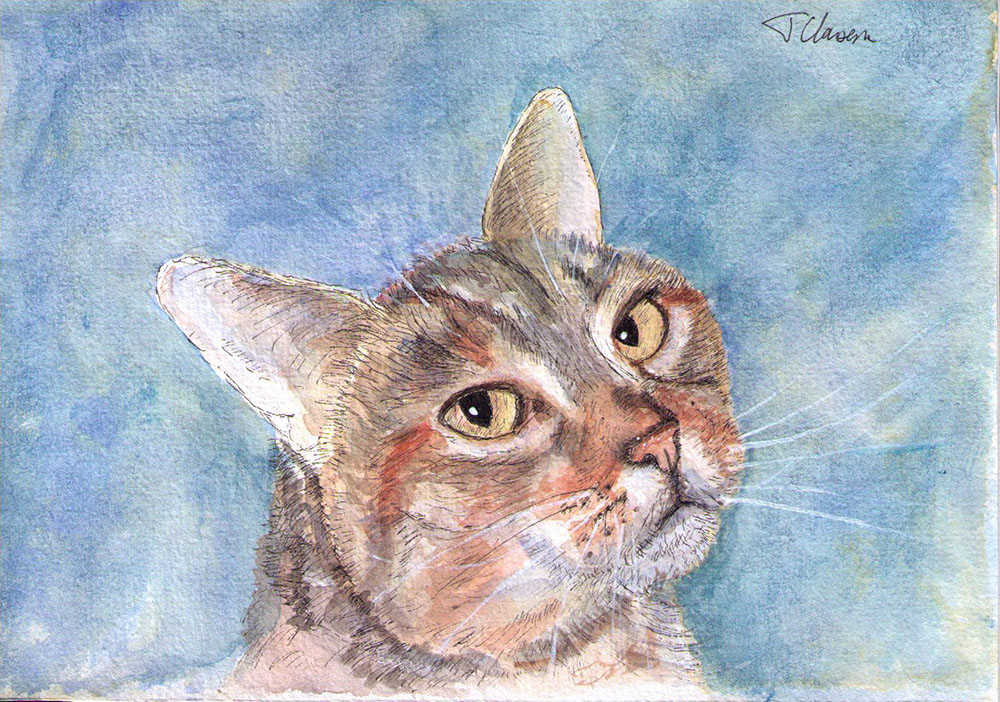 Cat portrait drawing in pen and watercolor for the winner of a previous giveaway