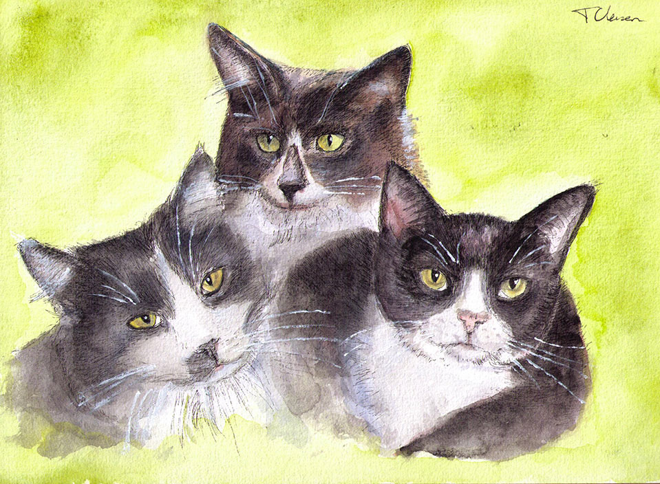 custom group portrait of three cats in pen and watercolor